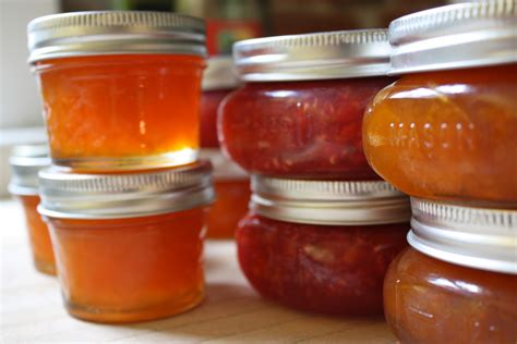 Recipes for Jams, Jellies, and Marmalades | The Old Farmer