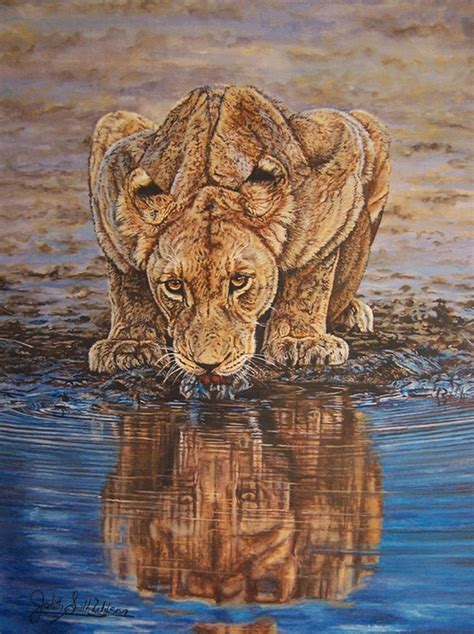 Lioness At Waterhole Watercolor By Judith Smith Wilson
