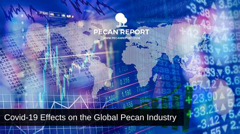Covid-19 Effects on the Global Pecan Industry - PECAN REPORT